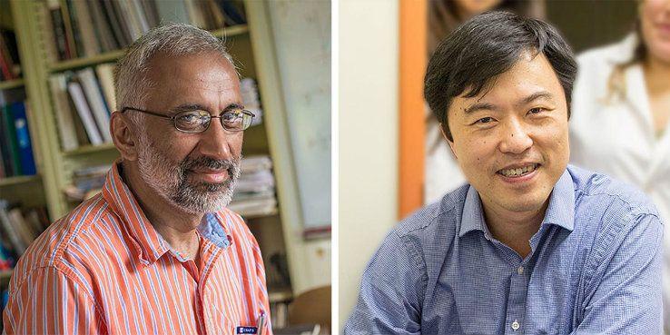 Anand Jagota and Frank Zhang