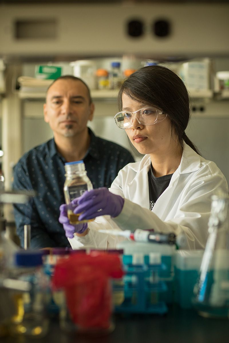 Professor Javier Buceta and Yanyan Chen, Ph.D.