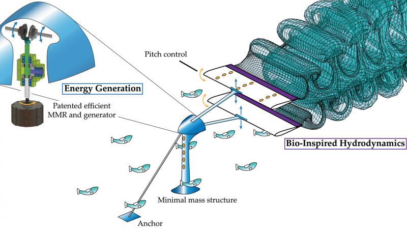 bio-inspired hydrokinetic energy system