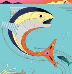 Schematic of tuna swimming