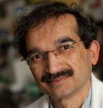 Himanshu Jain, professor of materials science and engineering