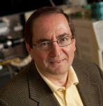 Israel E. Wachs, chemical and biomolecular engineering professor