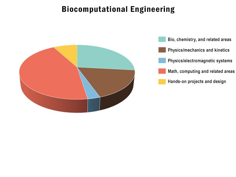 B.S., Biocomputational Engineering